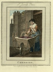 Cherries. The Itinerant Traders of London in their Ordinary Costume, from Modern London; being the history and present state of the British Metropolis. Illustrated with numerous copper plates - British Library
